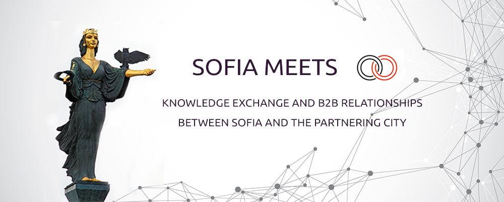 Sofia-Meets-Series-english-presentation-project